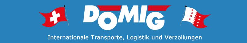 Logo Domig Transporte